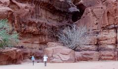 Wadi Rum, Jordan (LarrynJill) Tags: travel 2014 jordanandcyprusvacation jordan middleeast vacation wadirum desert sand travelling nikon coolpix adventure nature