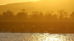 Rowers and Coach (blachswan) Tags: ballarat victoria australia lakewendouree lake rowers coach rowingboat rowing rower sunrise goldenlight