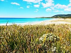 Eastern beach - Tasmania - Australia (pacoalfonso) Tags: pacoalfonsocom travel australia tasmania beach east coast