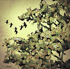 Autumn Tree (clabudak) Tags: tree birds flowers fantasy artistic texture artdigital artofimages