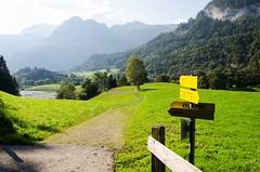 Krumsee, Tirol (stefan_wolpert) Tags: tirol evening walk eveningwalk alps alpen berge alpbachtal kramsach september landcape landscapephotography austria österrreich lake lakes krummsee tree meadow meadows idyylic scenic scenery alpinescenery alpine inntal rattenberg