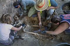 Exhumación cementerio civil Ponferrada (8)