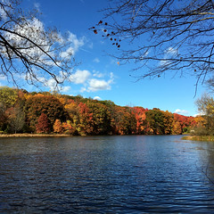 TibbettsBrookPark2 (shannonkelly13) Tags: tibbettsbrookpark fall autumn partly cloudy