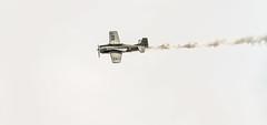 "NORTH AMERICAN T-28B ""TROJAN"" #2 (krustyhimself) Tags: scalaria wolfgangsee salzkammergut austria 2014 airshow airchallenge theflyingbulls redbull northamericant28btrojan"