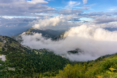 Cloudy mountains (kos Fekete) Tags: italy mountain mountains montegrappa veneto cloud clouds cloudaddictsanonymous cloudy sky blue green trees nature naturescomposition mbpictures beautifulcapture fall autumn 2016 september sony sonyalpha6000 alpha ilce6000 selp1650 emount evil mirrorless milc csc powerzoom landscape land
