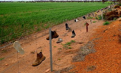 HAPPY BOOT FENCE FRIDAY (elliott.lani) Tags: happyfencefriday fence boots shoes thongs grass landscape wow
