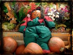 Happy Halloween! [explored] (Ryuu) Tags: happyhalloween pumpkins food vegetables pumpkinbaby decoration halloween cute funny kawaii jackolantern artwork flowers funnyface smile eyes pumpkinmascot