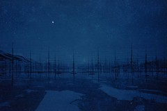 (ystein Aspelund) Tags: construction science artic antenna colors blue light snow norway nordic