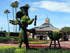Chef Mickey Topiary (meeko_) Tags: mickey mouse mickeymouse chef chefmickey topiary grill showcaseplaza worldshowcase epcot themepark international food wine festival foodandwinefestival internationalfoodandwinefestival walt disney world waltdisneyworld florida