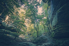 Technicolor The Sequel (Anthonypresley1) Tags: illinois anthony presley anthonypresley nature landscape tree trees leaf leaves canyon rocks technicolor old retro vintage blue green sun yellow