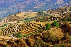 Nepal  015 (Katarina 2353) Tags: landscape nepal spring katarina2353 katarinastefanovic