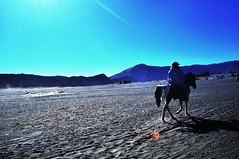 Kaldera Bromo (narayanaadventure) Tags: bromo gunungbromo travelerindonesia paketwisatabromo mountbromo lonelytraveler
