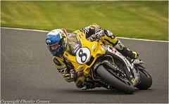 Concentration Required (cconnor124) Tags: england unitedkingdom gb motorbikeracing motorbikes oultonpark racing speed wheels power canon100400lens canon7dmk11