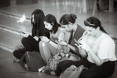 In a row BW (Мaistora) Tags: street urban candid portrait group girls women ladies female friends sitting steps texting phone mobile cellphone smartphone culture lifestyle ubiquity connected bird pigeon dove tourist tourists visitors citadel oldcity oldtown square stone cafe tired relax sony alpha ilce a6000 90mm macro f28 sel90m28g lightroom