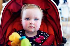 20161112-01-Ella (Roger T Wong) Tags: 2016 australia hobart iv mona metabones museumofoldandnewart rogertwong sigma50macro sigma50mmf28exdgmacro smartadapter sonya7ii sonyalpha7ii sonyilce7m2 tasmania baby portriat