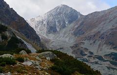 Pachola i podejście na Banikowską Przełęcz