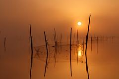 Sunrise of lake Inba (t.kunikuni) Tags: 佐倉市 千葉県 日本 jp 佐倉 さくら サクラ 千葉 ちば チバ 印旛沼 いんばぬま インバヌマ 日の出 夜明け 朝焼け japan sakurashi sakura chibaken chiba lakeinba inbanuma sunrise dawn daybreak