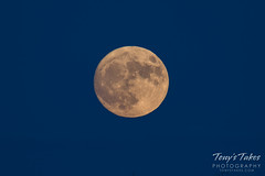 The November 2016 Supermoon