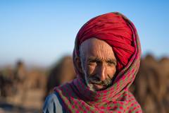 Rajasthan Royal (Karunyaraj) Tags: herder pusharfair pushkar camelherder camelfair camelfair2016 red turban redturban smile proud royal rajasthan potrait herderpotrait morning cwc cwc561 chennaiweekendclickers nikond610 d610 fullframe