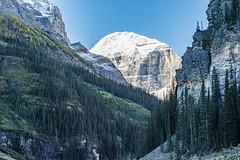 K56A8443 (paulaf55) Tags: canada canadianrockies glacier lakelouise mountains
