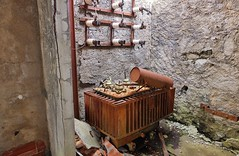 Valle du Biros, mines du Bentaillou (thierry llansades) Tags: biros ariege saintgirons girons cabane etang fleur fleurs montagne rando randonne randonneur randonneuse randonnee randos ruine bentaillou mines urbex eylie cos toulouse toulousain ruines couserans