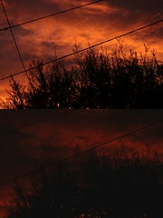 Burning skies. (_Azzurra) Tags: sun sunshine sunsrise sunset sunnyday morning evening night sky skyline clouds grey color colors warmcolors colorful happy life love tree tress nature canon fire red light lights happiness