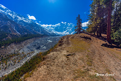 Nanga Parbat and Raikot glacier (imrankhakwani) Tags: nanga parbat killer mountain snow fall gilgit baltistan pakistan 8000er raikot glacier tree jungle stream trek