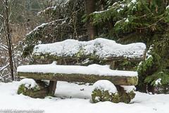 Holzbank im Schnee aufgenommen an der Dhnntalsperre im Bergischen Land - Wooden bench in the snow photographed at the Dhnntalsperre in the Bergisches Land (klausmoseleit) Tags: schnee sitzmbel orte wasser jahreszeit bergischesland dhnntalsperre bnke winter einrichtungsgegenstnde wermelskirchen nordrheinwestfalen deutschland de