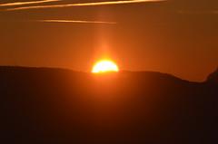2.12.16. 16,36 Sonnen stand. (dreistrahler) Tags: luchs baselland eap swiss airshows zoobasel langeerlen zrh natur hunter fcbasel fasnacht blche
