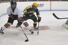 Hockey, LIU Post vs Princeton 31 (Philip Lundgren) Tags: princeton newjersey usa
