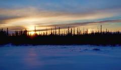 Late Morning Sunrise - Alaska (JLS Photography - Alaska) Tags: alaska alaskalandscape america landscape lastfrontier landscapes scenery sunrise sunlight wilderness winter winterlandscape beautifulscenery cold jlsphotographyalaska northof60 nature north outdoor sky serene skyline cloud