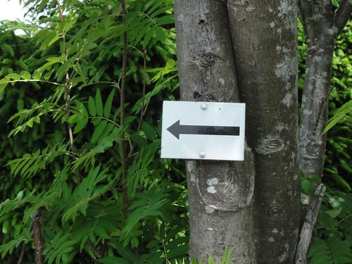 This way - Hier entlang