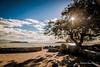 Ponta do Sambaqui (_ R i c a ® d O _) Tags: los santos ricardophilippide sambaquifloripaflorianópolisbrasil