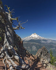 Mt. Hood From Lookout Mtn. (Explore) (Joshua Johnston Photography) Tags: oregon volcano hiking mthood lookoutmountain landscapephotography hikingoregon canon6d canon24mm28is joshuajohnston