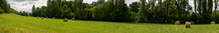 Une botte, des bottes ... (gaelmonk) Tags: france nature countryside champs paysage campagne botte foin panoramique bl tarnetgaronne grandangle touffailles