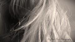.. (KayleighPage7) Tags: blackandwhite face hair blackwhite experimental blonde rough