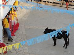 FiestasVispal14-065