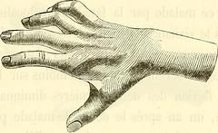 Anglų lietuvių žodynas. Žodis thenar reiškia n anat. (rankos) nykščio pakyla lietuviškai.