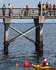 2012 Rose Pitonof Swim from Manhattan to Coney Island, New York City (jag9889) Tags: nyc newyorkcity usa ny newyork brooklyn swim coneyisland pier kayak unitedstates unitedstatesofamerica kayaking swimmer athlete paddling atlanticocean 2012 kayaker kingscounty urbanswim rosepitonof jag9889 y2012 20120818
