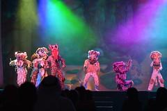 Cirque Dreams | سيرك الأحلام في فانتازيا الأدغال