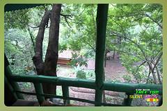 Silent Valley---------------39 (Binoy Marickal) Tags: india green tourism nature water rain kerala mala palakkad evergreenforest treaking silentvalleynationalpark nilgirihills mannarkkad mukkali kuzhur indiabinoymarickal