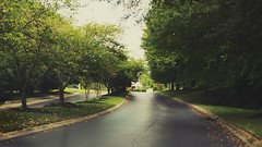 (notfakemaris) Tags: trees tree green nature way day nashville tennessee frankin