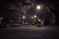 Noche en el parque (Max Rabuini) Tags: park parque light bw blancoynegro night noche camino path montevideo parquerod mvd montevideodenoche