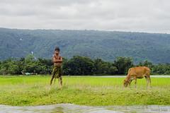 The Cowboy got attitude-02 (nzmsskb) Tags: life mountain nature beautiful beauty landscape photography landscapes nikon photographer natural sylhet bangladesh d7000