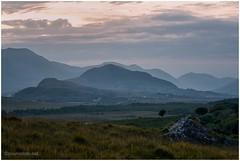 Connemara2014 (8) (cosmo_71) Tags: ireland irland connemara conemara 12pins benbaum