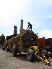 025 (alexandre.vingtier) Tags: haiti rum caphaitien nazon clairin rhumagricole distillerielarue