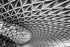 Branching Out (Sean Batten) Tags: england blackandwhite bw london lines architecture nikon unitedkingdom curves trainstation kingscross lattice d800 1424