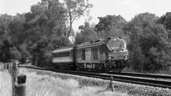 Not Sulzer/Crompton Parkinson (Fray Bentos) Tags: vossloh 68004 class68 newlocomotive elynorwichline