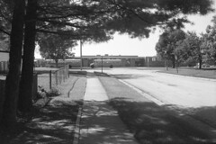 school's almost out (Mark.Swanson) Tags: street school trees bus film fence illinois 11 d76 sidewalk normal schoolbus fujica trixpan compactdeluxe fujinon1845mm