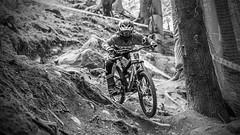 cruz mono (phunkt.com) Tags: world mountain bike norway race championship champs keith valentine downhill uci 2014 hafjell phunkt phunktcom